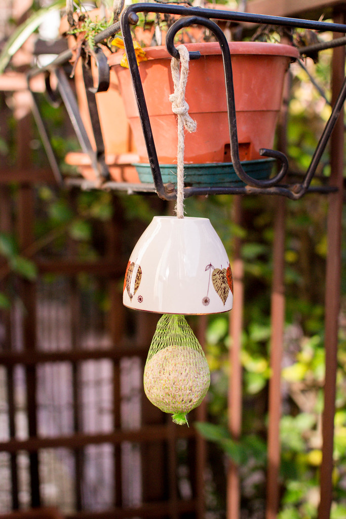 Try This :: Vintage Tea Cup Birdfeeder