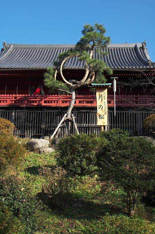 東京路地裏散歩 上野公園の秋 2014年12月14日
