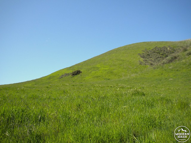 Cheeseboro Canyon 2