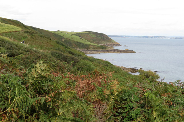 The coast path south of Nare Head