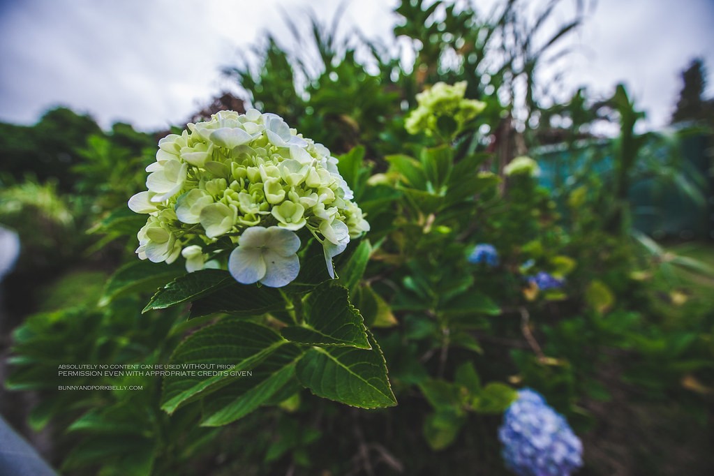 August 18, 2014-IMG_5397