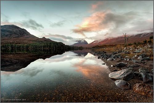 reflection tree sunrise scotland ross scottish explore lone loch clair torridon wester