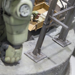 GBWC2014_World_representative_exhibitions-48