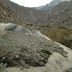 This fascinating photo shows the eroded edge of a desert mudslide.  The hardened mud and silt carried a rich collection of granite rocks from a cliff side high above. A moment of energy and natural violence frozen like a artists tableau.