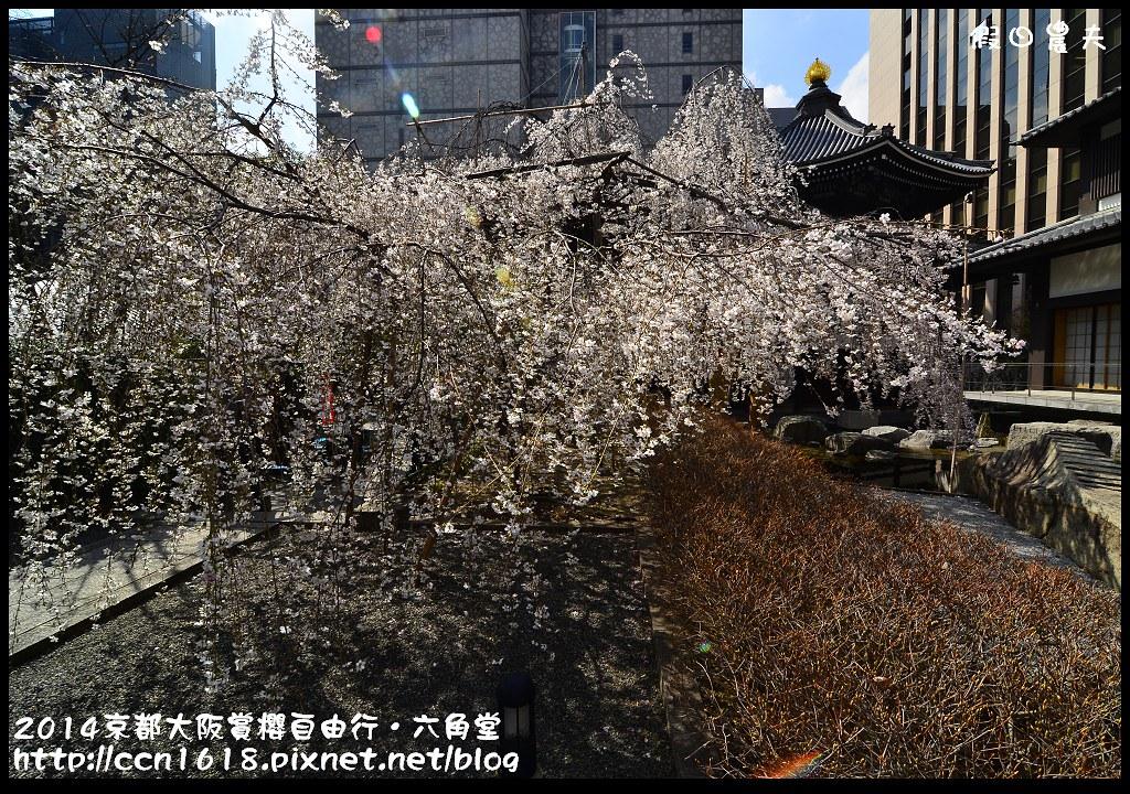 2014京都大阪賞櫻自由行.六角堂DSC_0375