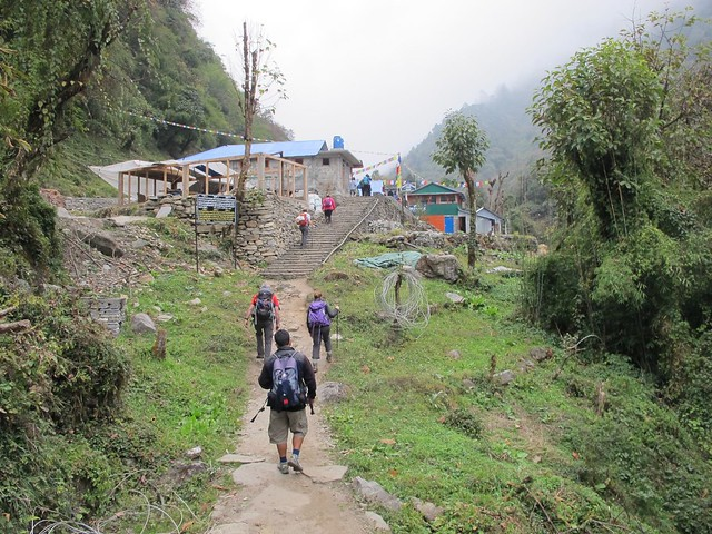 Annapurna Trek: Day 7 Chomrong to Dovan