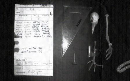 Mensaje hallado en la paloma de Surrey