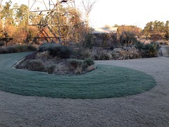 Winter frost: 30 degrees!
