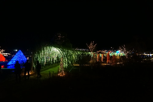 Flower Fantasy 2015 illumination at Ashikaga Flower Park 14