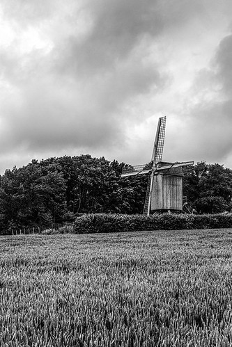 mill windmill landscape bw sky cloudy clouds field trees oat flanders terdeghem nordpasdecalaispicardie france old wind nature rural blackandwhite monochrome noiretblanc canon eos 1100d bnw outside digital ef24mmf28 blackwhitephotos blackwhite
