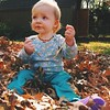 Figuring out leaves... and why dad just put me in a pile of them.