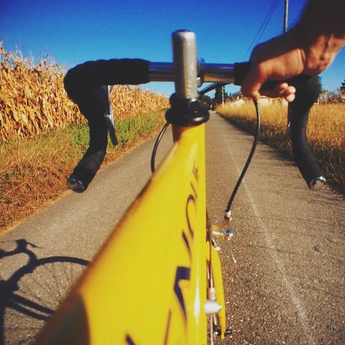 Riding !