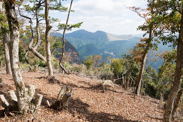 兜岳 山頂からの景色