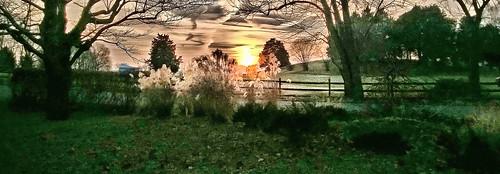trees sunset sky sun nature landscape annapolismaryland harnesscreek