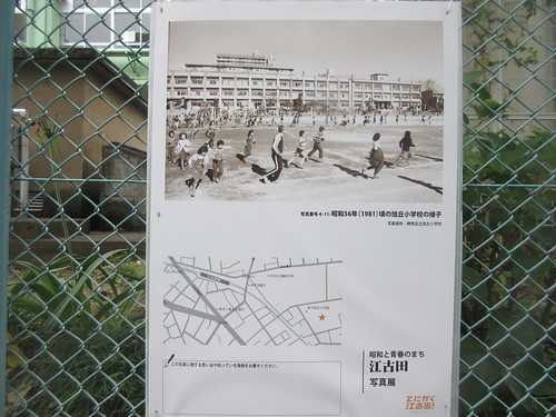 旭丘小学校(江古田)