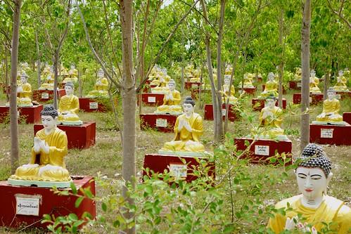 Buddha statues in forest near Monywa, Myanmar