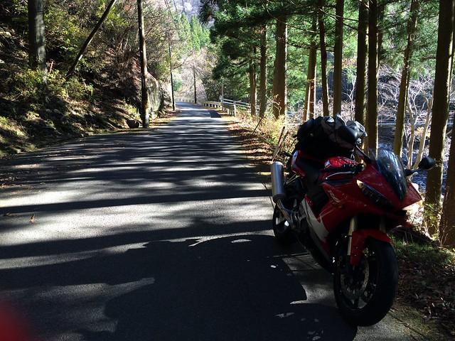 国道309号線 バイク