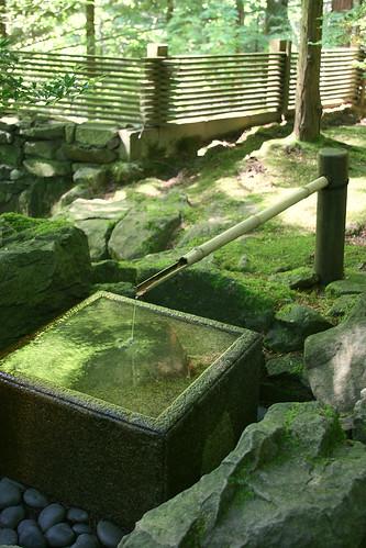 6_well_fountain