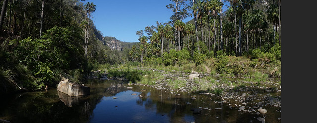 Carnarvon Gorge is Paradise