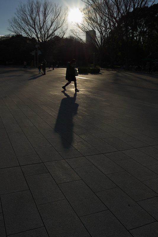 東京路地裏散歩 上野公園にて 2015年1月7日