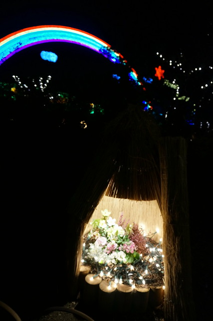 Peony dome Flower Fantasy 2015 illumination at Ashikaga Flower Park 08