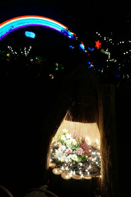Peony dome Flower Fantasy 2015 illumination at Ashikaga Flower Park 08