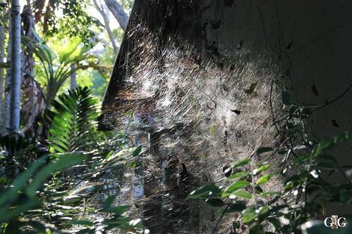 Zoo Miami 14.11.2014 122
