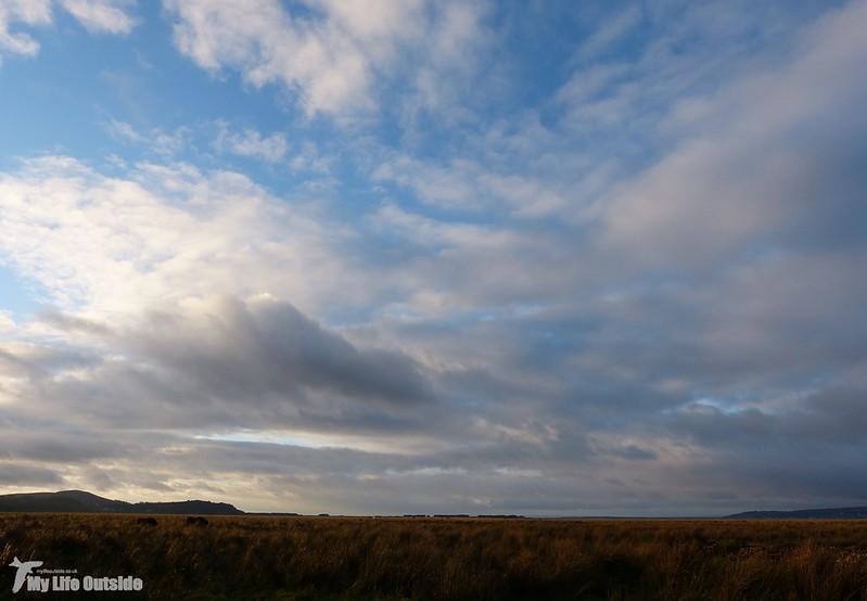 P1100772 - Llanrhidian Marsh, Gower