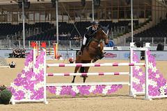 Royal Windsor Horse Show 2016