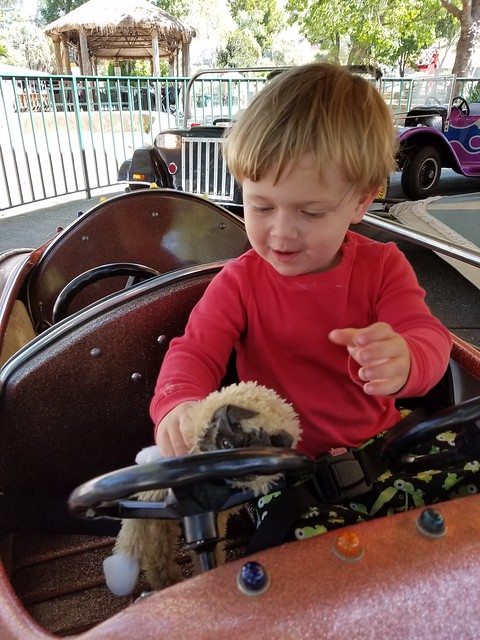 Photo:Driving with Monkey By quinn.anya