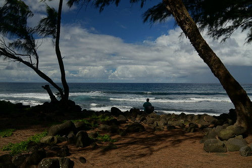 beach hawaii fishing fisherman palmtrees waipiovalley angling waipiobeach kukuihaele turtleslava2014
