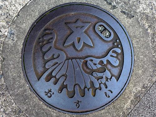 Takatsuki Osaka, manhole cover 3 (大阪府高槻市のマンホール3)