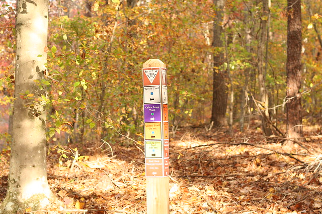 James River State Park Fall 2014 (332)