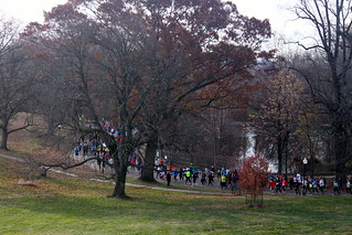 Runners in the park