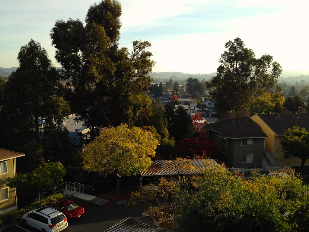 Castro Valley early morning. No porch, but sometimes a back balcony is enough ...