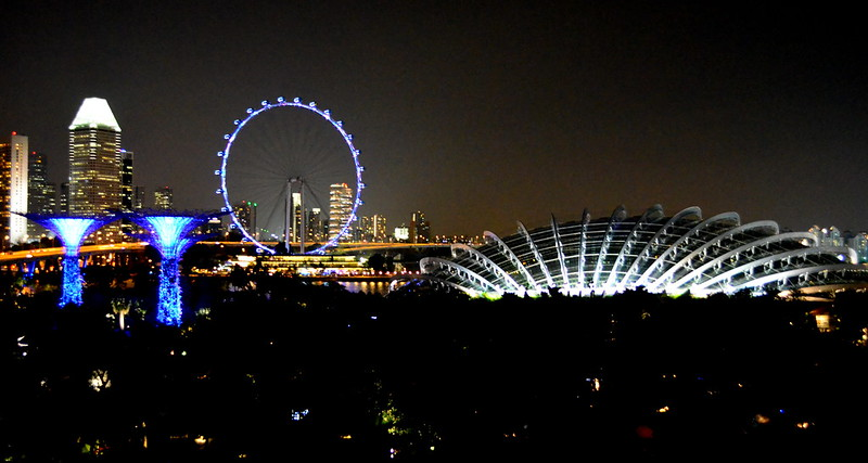 Singapore Flyer at Night 1
