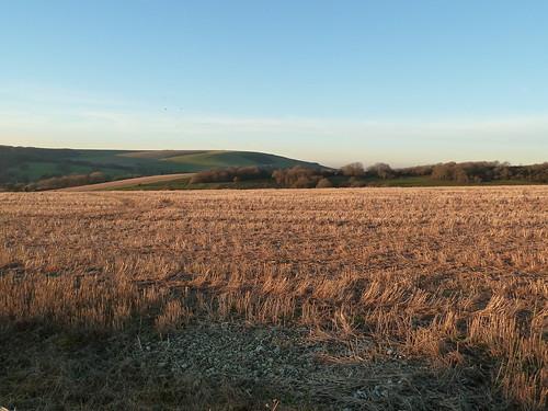 Wheatfield in Winter (Berwick to Birling Gap)