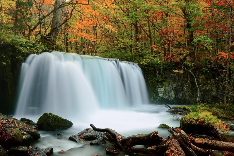 日本 青森–東北之旅–奧入瀨溪流Oirase Mountain Stream(下)
