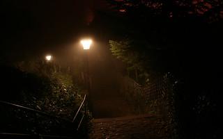 Weg im Nebel, Heidelberg