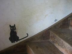 Smoking Cat & Running Mouse
