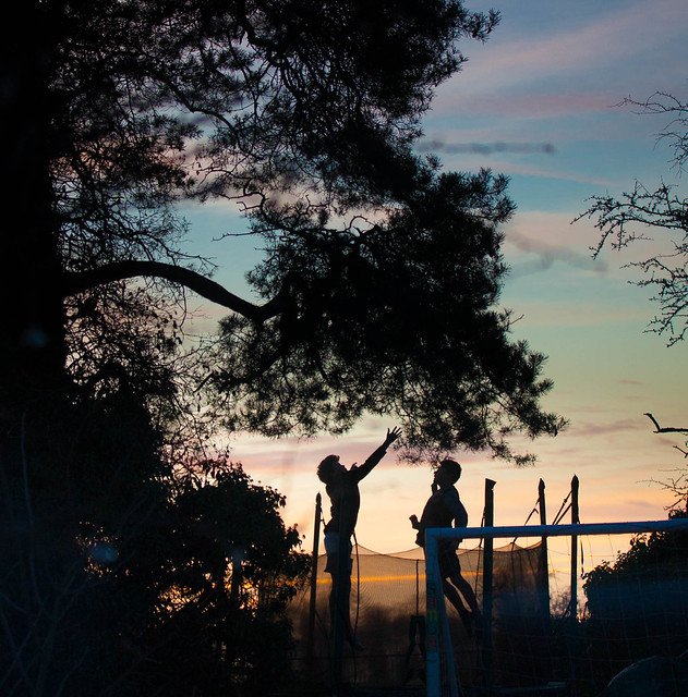 Trampoline at Dusk