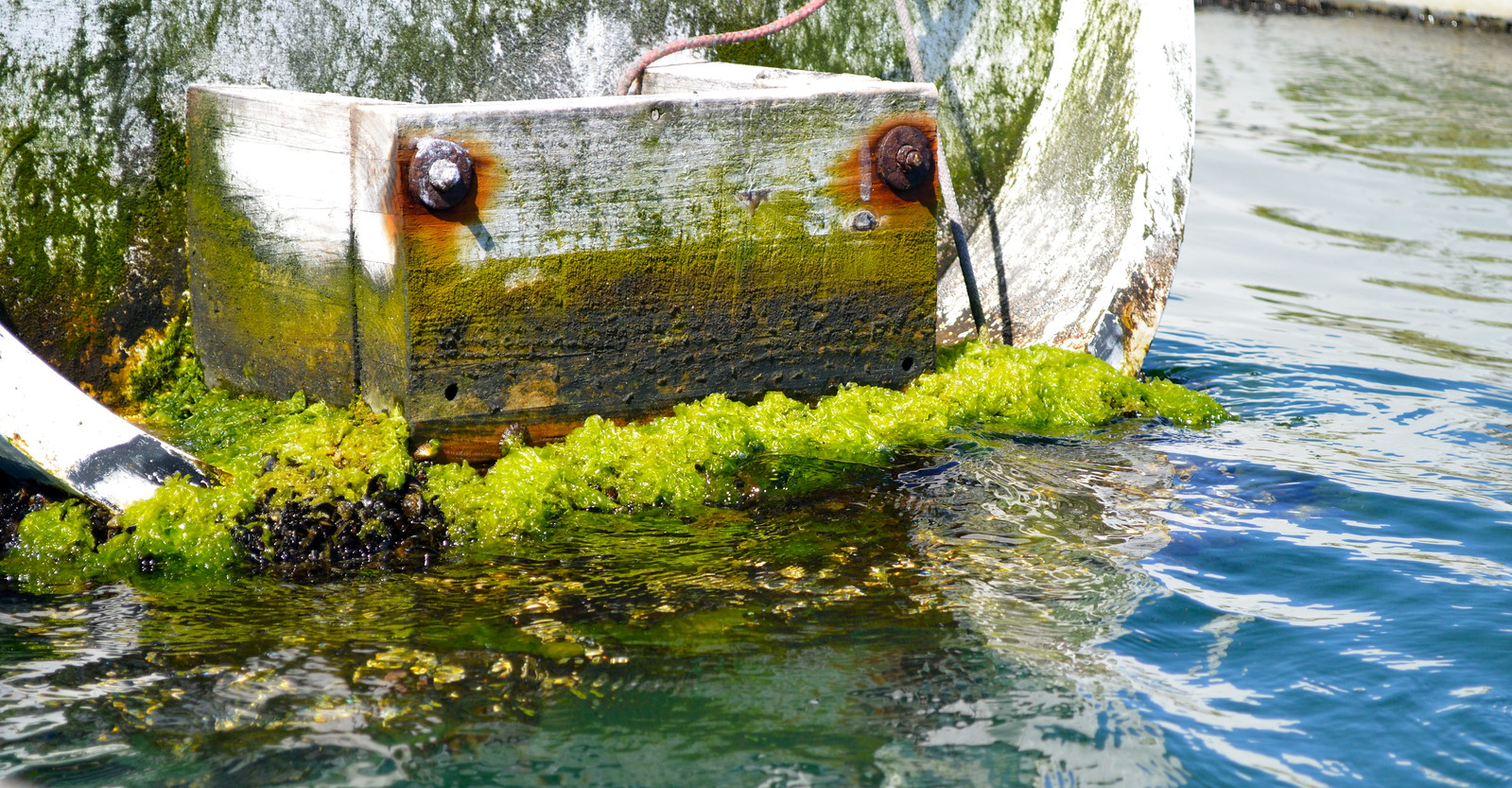 A neglected boat