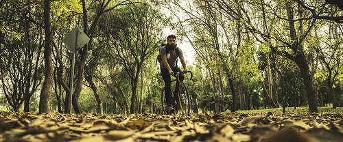 park portrait man nature bike landscape