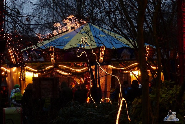 Erlebniszoo Hannover 30.12.2014 260