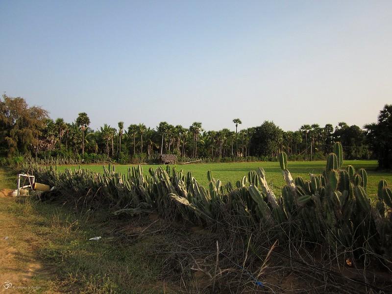 Vylet v Ponnapudi 2015