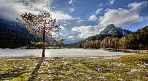 travel winter panorama lake mountains tourism ice nature landscape europe day postcard tourist panoramic slovenia lonelyplanet wintertime nationalgeographic jasna globetrekker travelguide panoramicview travelphotography jasnalake kranjskagora landscapephotography panoramicphotography traveltheworld tripadvisor landscapeview iceonthelake ifeelslovenia postcardphotography treeatthelake iztokkurnikphotographystudio showinmyeyes fotobyiztokkurnik