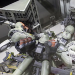 GBWC2014_World_representative_exhibitions-117