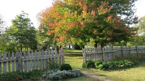 Fall at Historic St. Mary's City