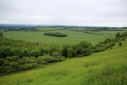 The view from Walbury Hill