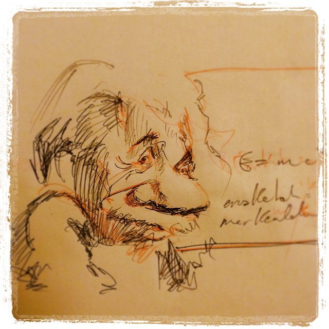 Sketching for my next illustration #einstein